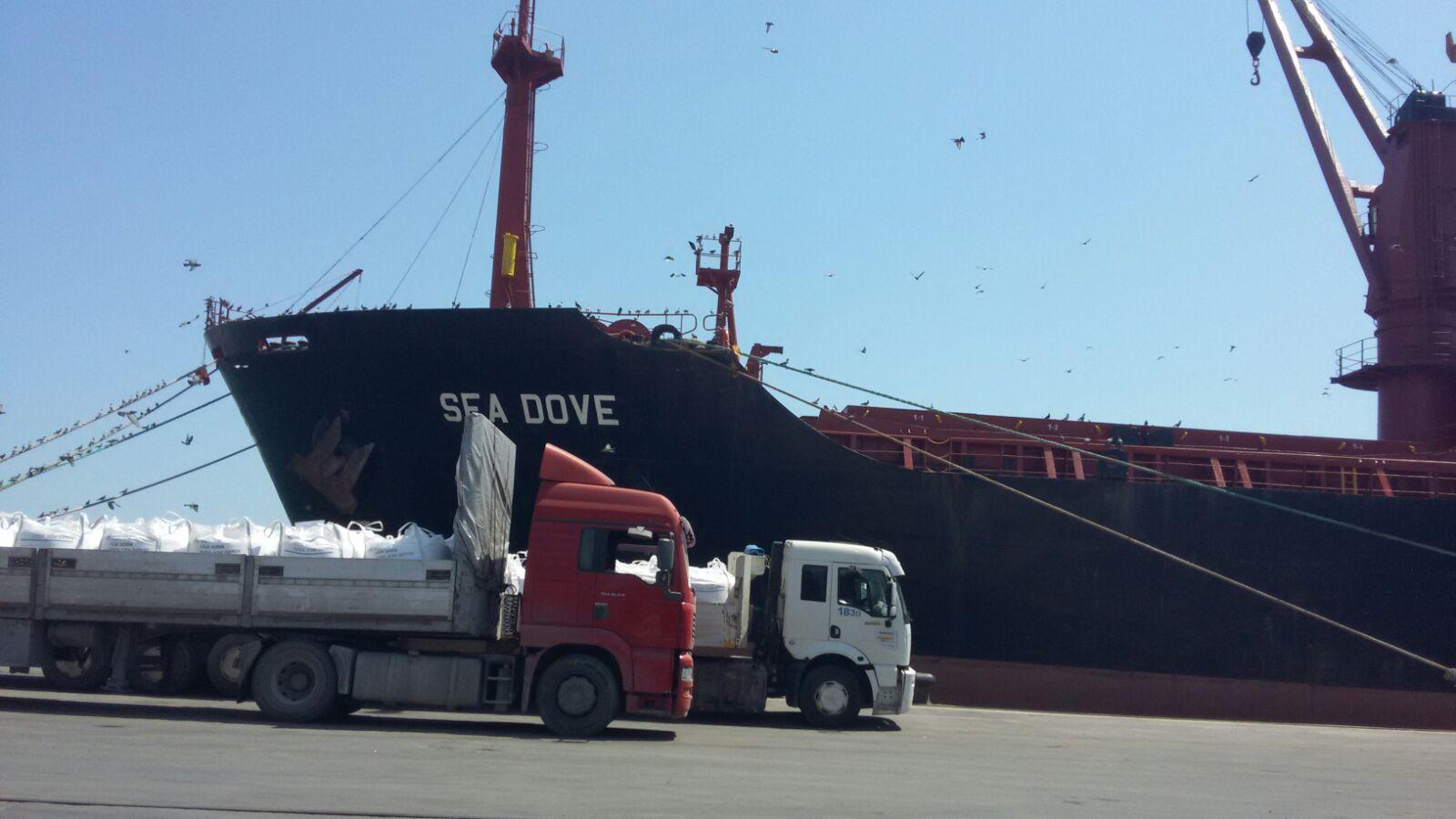 MV SEA DOVE – DISCHARGING